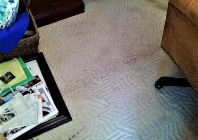 Water Not Detected Below Carpet
